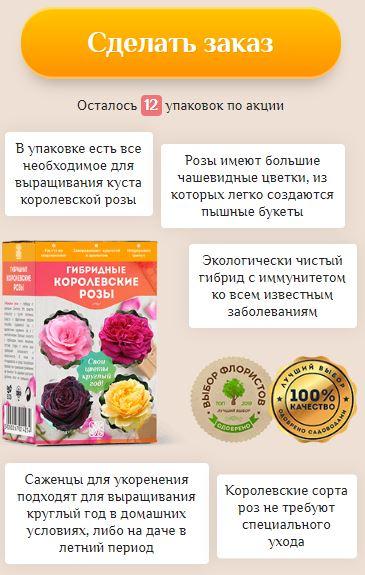 Как заказать комнатная роза размножение в домашних условиях