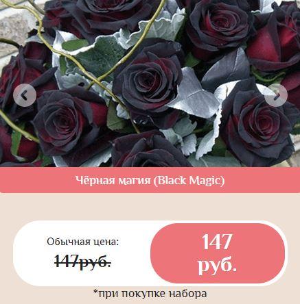 Как заказать гибридные королевские розы купить в Подольске
