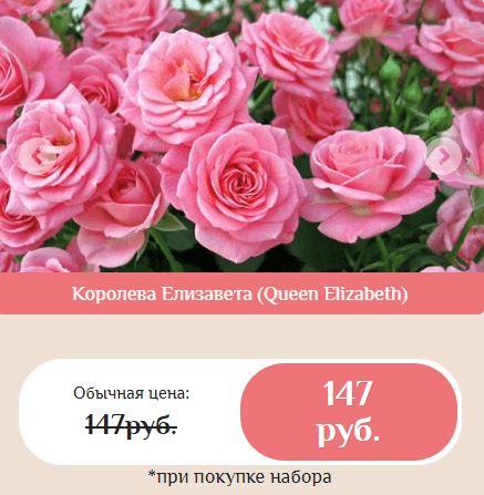 Как заказать гибридные королевские розы купить в Нижнекамске